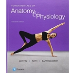 bundle-fundamentals-of-anatomy-physiology-11e